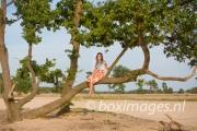 Boximages-9494