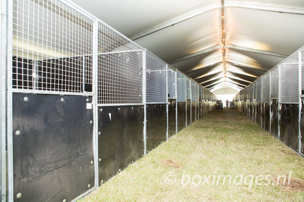 Boximages-0003
