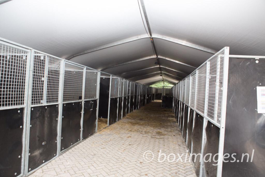 Boximages-9561