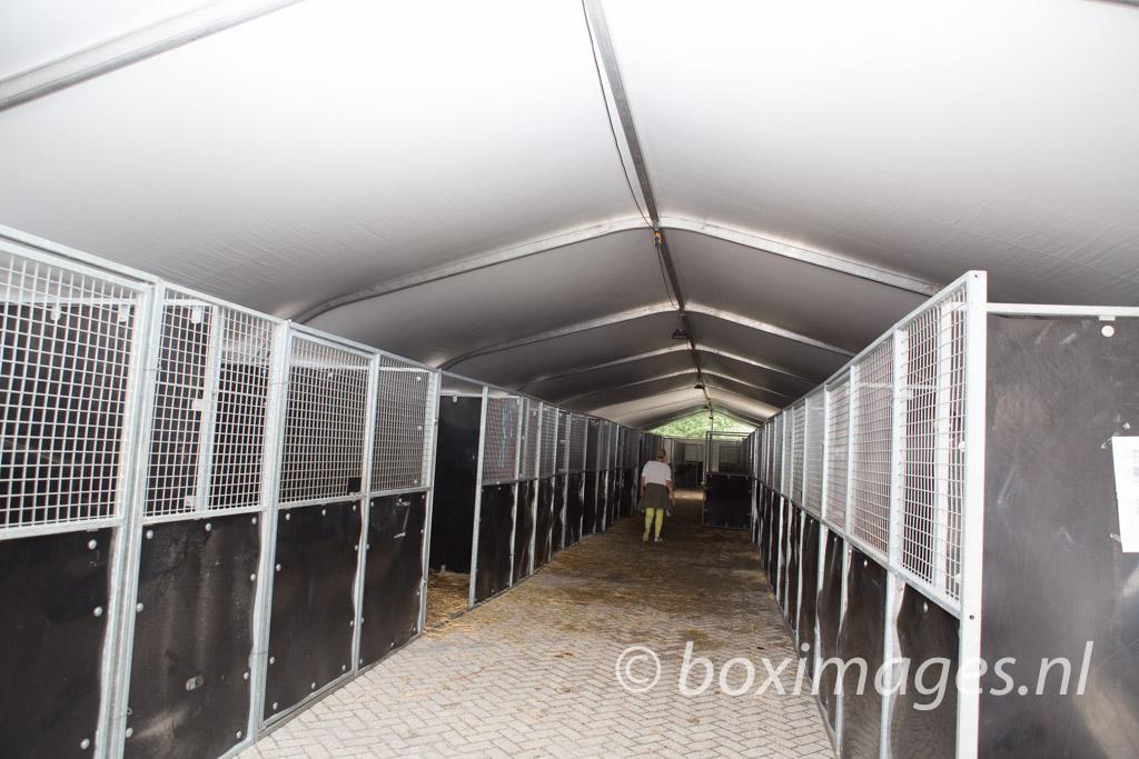 Boximages-9562