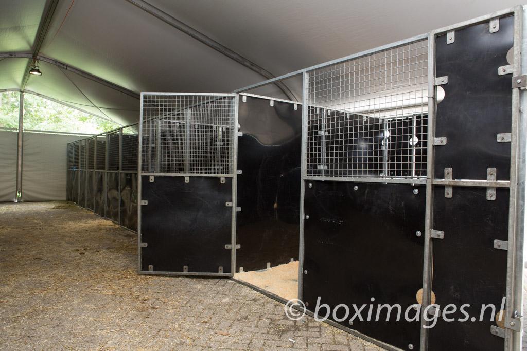 Boximages-9592