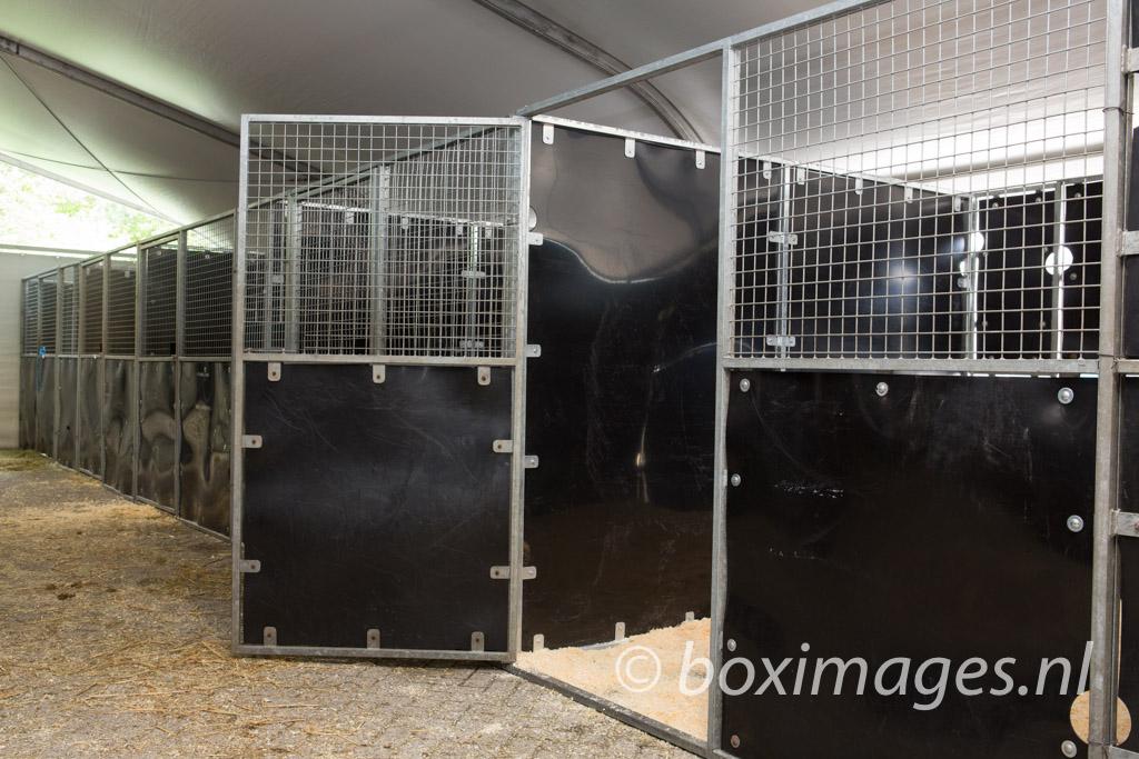 Boximages-9594