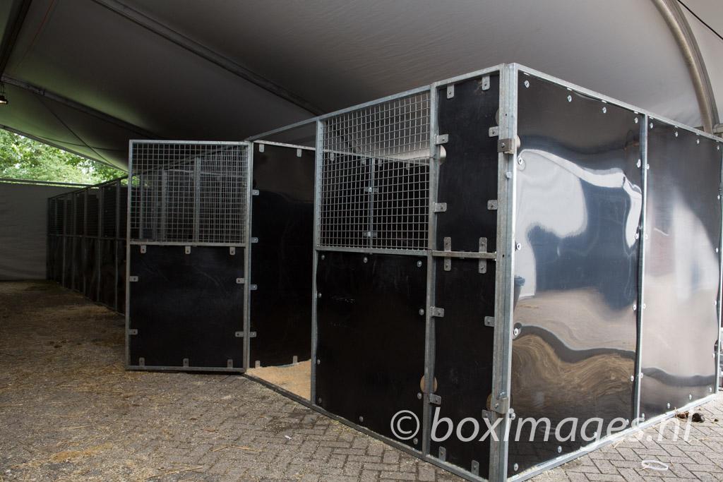 Boximages-9595