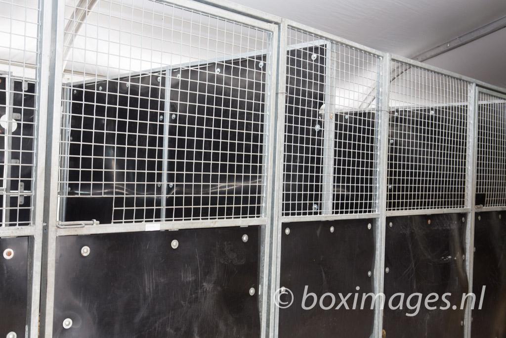 Boximages-9600