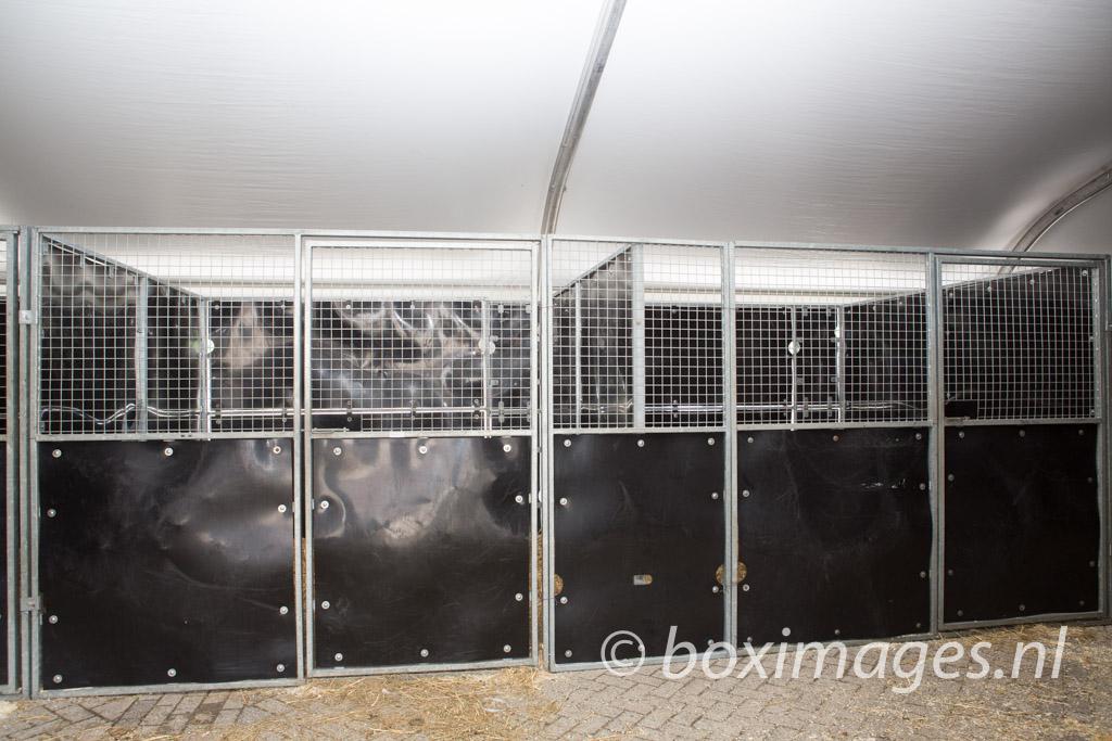 Boximages-9601