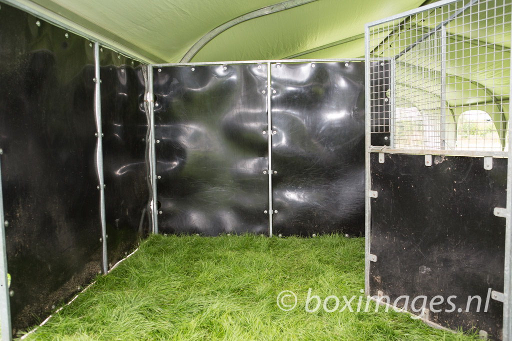 Boximages-9695