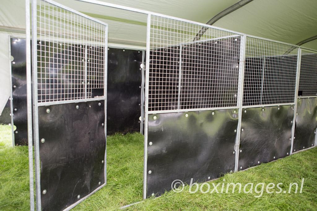 Boximages-9696