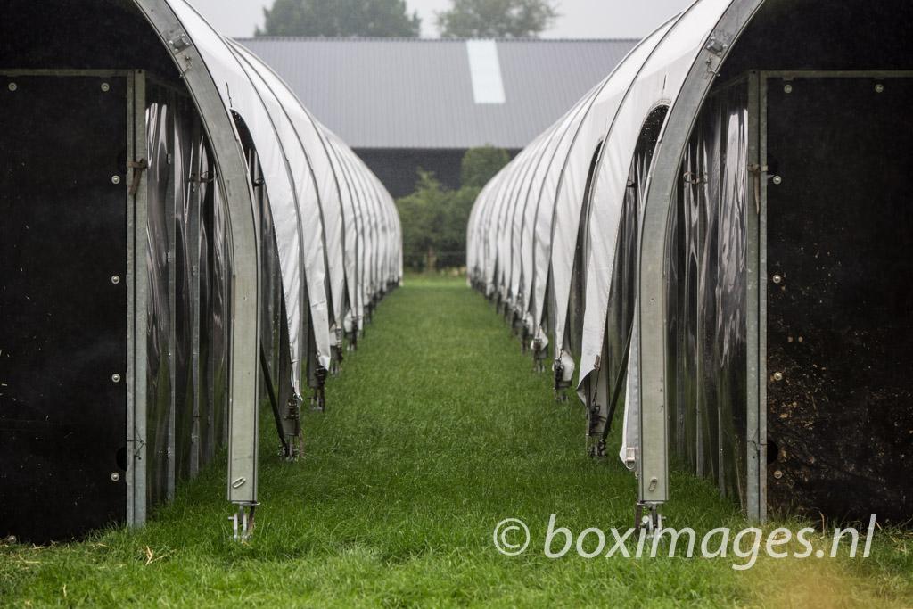 Boximages-9741